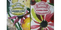 GIFT PACKAGING FRUITY HERB  TEAS ECHINA-GINGER: