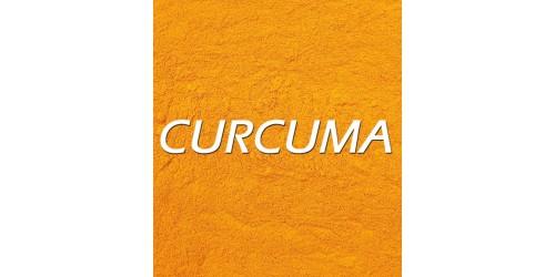 CURCUMA (Curcuma longa) (BIO /POUDRE)