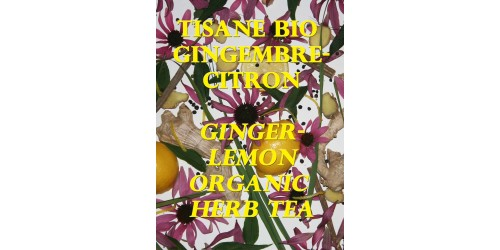 ORGANIC HERB TEA GINGER-LEMON (BULK)