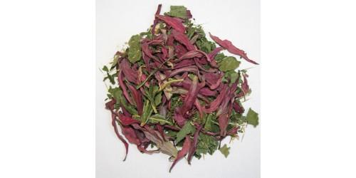 ORGANIC ECHINACEA TEA, Echinacea purpurea (Leaves, root and flowers)