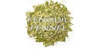 ORGANIC HERBAL TEA, FENNEL (Foeniculum vulgare) / whole seeds