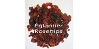 TISANE BIO ÉGLANTIER / CYNORRHODON / Rosa canina / eglanteria / rugosa