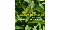 ORGANIC HERBAL TEA PEPPERMINT (Mentha X  piperita) 150g