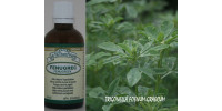 FENUGREEK, Organic tincture, (Trigonella foenum-graecum)