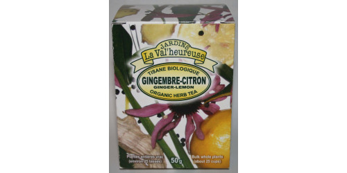 TISANE BIO GINGEMBRE-CITRON