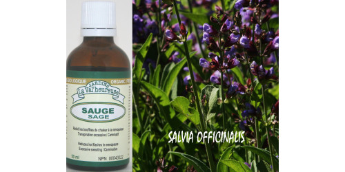 SAGE, ORGANIC TINCTURE, Salvia officinalis